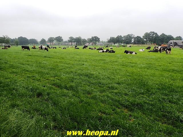 2018-06-02  Voorthuizen - Wandelfestijn     26 Km  (116)