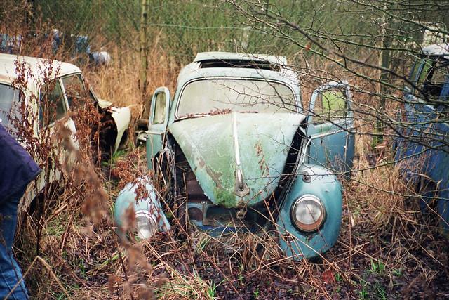 Autofriedhof: VW Export