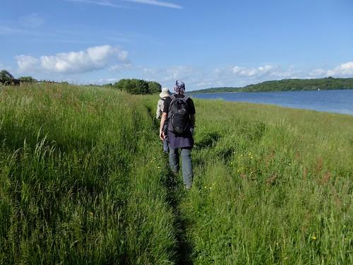 Along Bewl Water (option b) Etchingham to Wadhurst walk