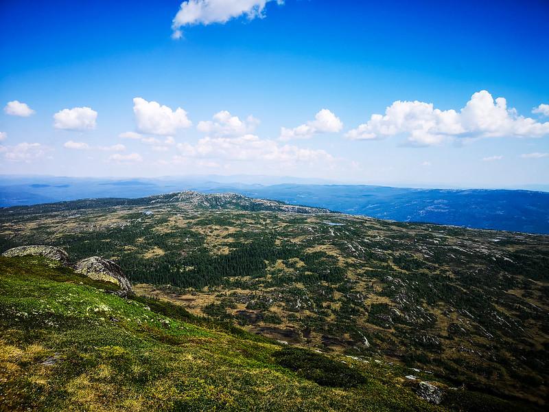 15-Utsikt østover fra Senhovd