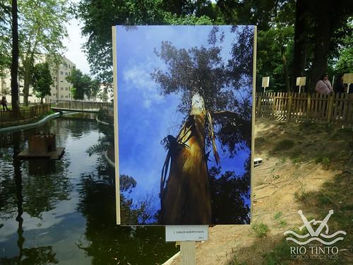 2018_06_02 - Inauguração da exposição de fotografias e entrega de prémios (88)