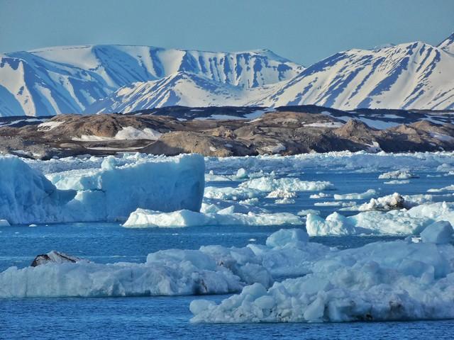 Icebergs en Svalbard