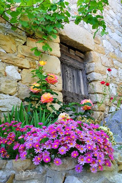 Une vieille porte bien fleurie ...