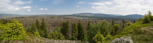 Panorama of the Nationalpark Harz, with the Brocken