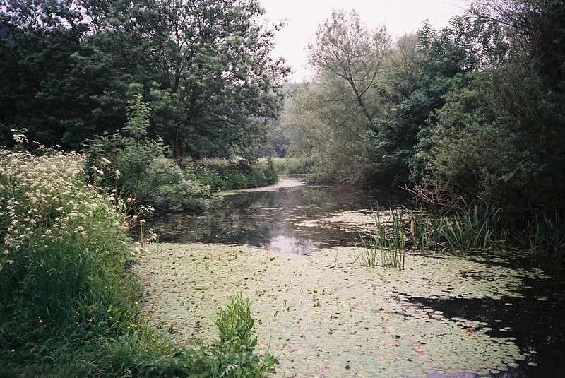 The lagoon, Eastwood Farm