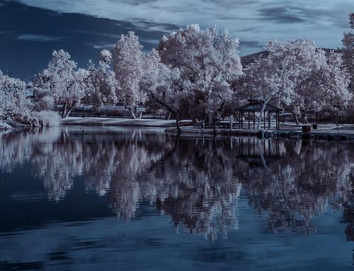 convertedinfraredcamera ir infrared infraredphotography santeelakes santeelake5 trees reflections clouds surreal nature naturalbeauty highcontrast santee