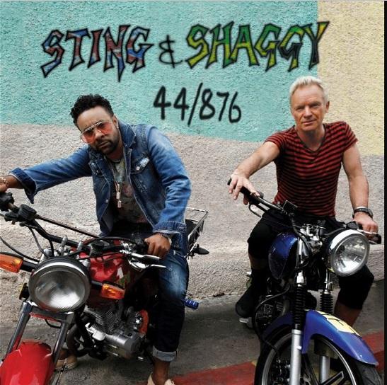 stingshaggy