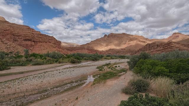 Maroc  La Vallée des Roses
