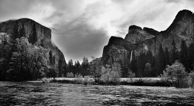 Taking in Yosemite National Park for One Last Time (Black & White)