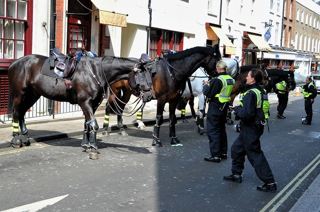 London Metropolitan Police Mounted Division