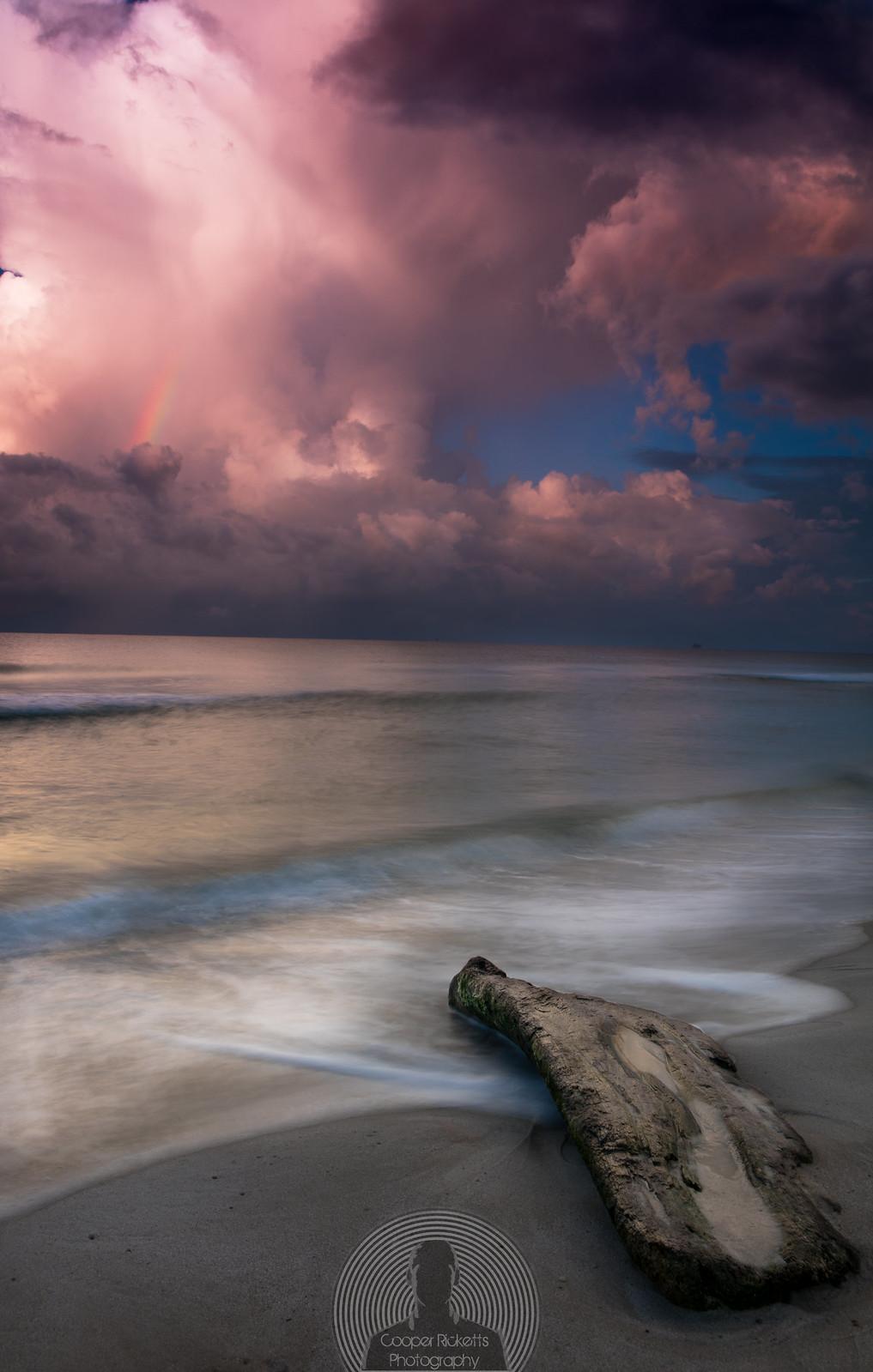 Driftwood_rainbow