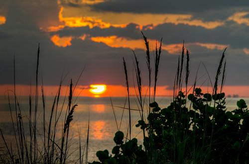 sunset gulf ocean water florida emersonpoint palmettoflorida landscape silhouette hdr gulfsunset beachsunset oceansunset