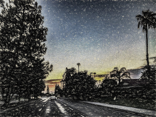 america bakersfield california drivebyphotography iphoneography jfflickr kerncounty painting phoneshot photosbydavid plant postedonflickr road sunrise tree unitedstates usa vehicle