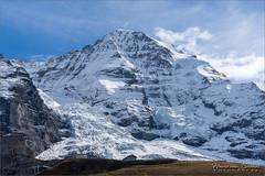 Eigergletscher en Mönch