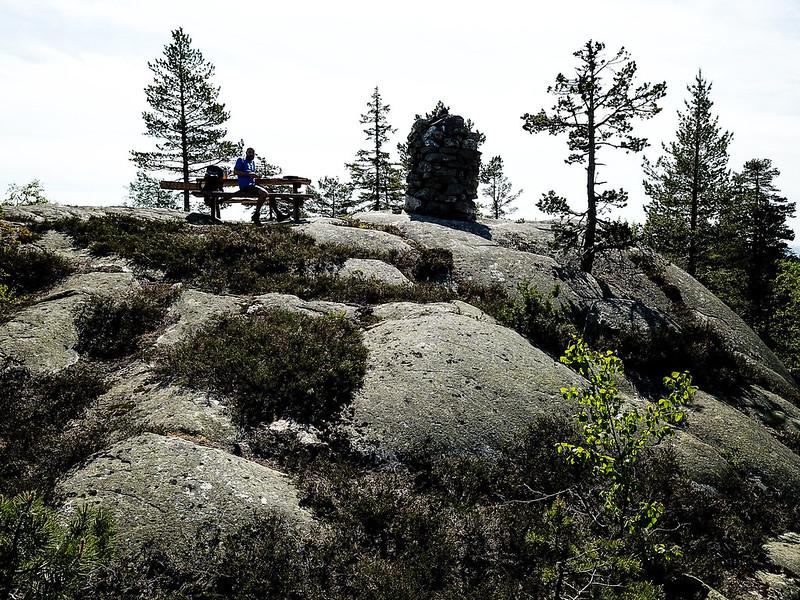 19-Nesfjell