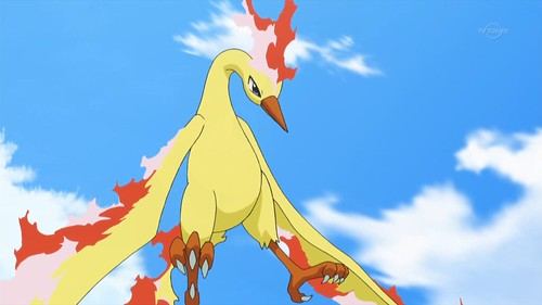 Moltres_XY086 | by DReager100