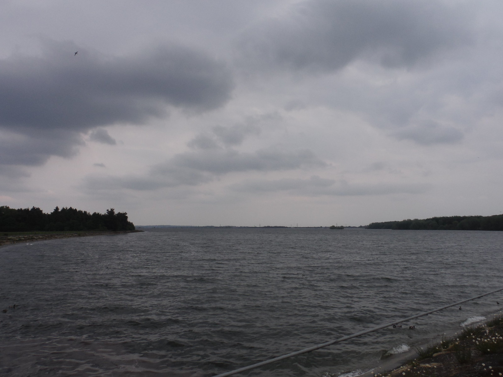 Hanningfield Reservoir, from road SWC Walk 158 - Ingatestone to Battlesbridge or Wickford