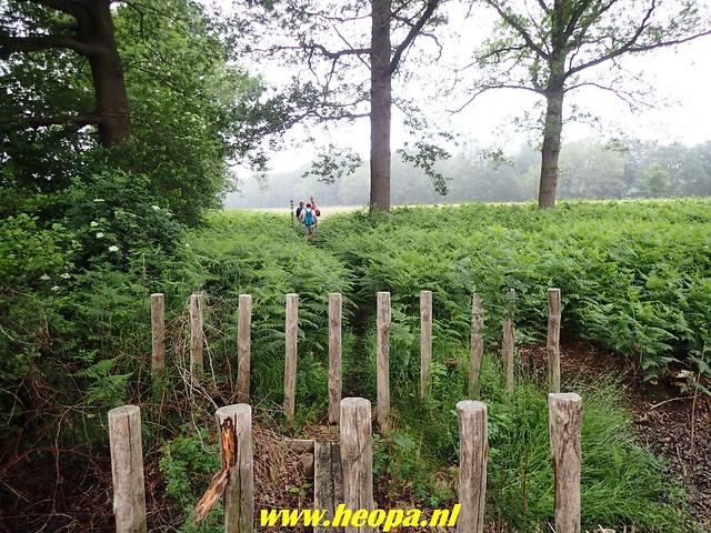 2018-06-02  Voorthuizen - Wandelfestijn     26 Km  (50)