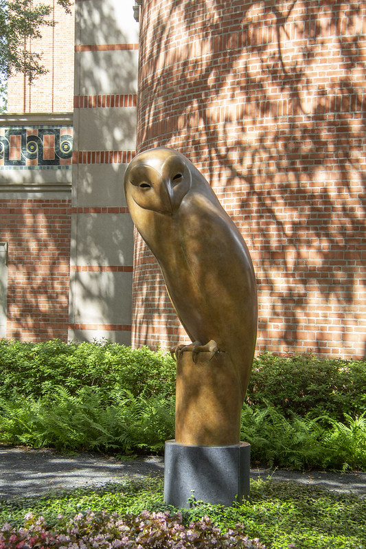 Rice University_28