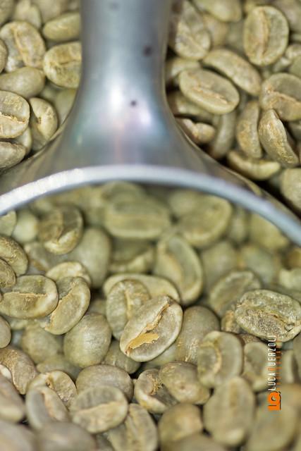 Dettagli del chicco di caffè