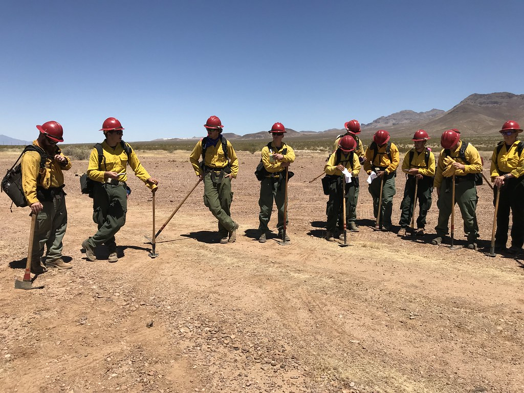 Wildland firefighters for the Gila District