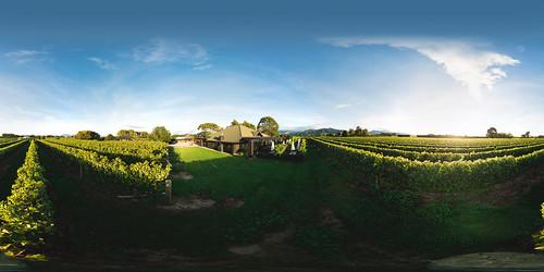 Vineyard Kitchen Morning   by Saint Clair Family Estate