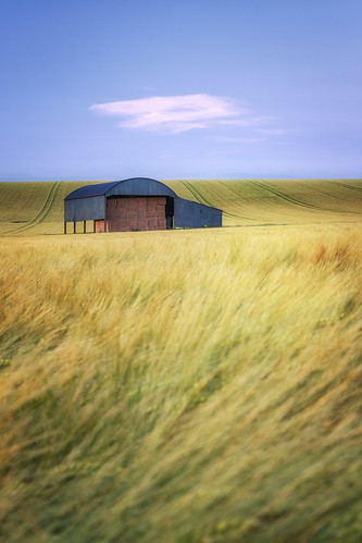 sixpennyhandley dorset barn field landscape landscapes landscapephotography landmark landmarks cloud wheat fields canon efs1585mmisusm eos eos80d