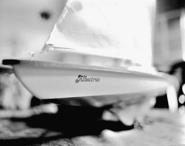 Albatros (Mamiya RB 67 s Pro  IMG_20180529_0007)