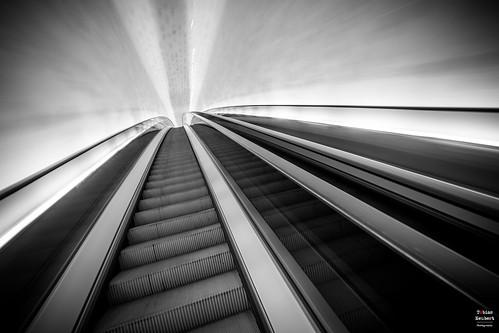 hamburg elbphilharmonie elphi rolltreppe rolltreppen escalators architektur architecture monochrom monochrome blackandwhite schwarzweis motion hafencity