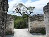 Tikal, Mundo Perdido, foto: Petr Nejedlý