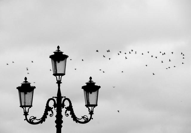 Venice Winter*