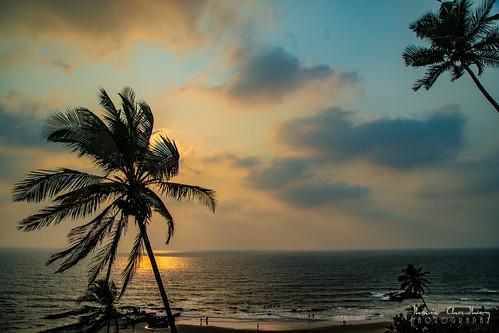 goa india outdoor seascape beach sunset sky skyporn clouds palmtree coconutpalm idyllic tranquil silhouette breeze reflection serene nature landscape surf sand coast arabian sea