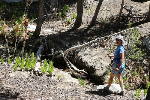 467 Vicki enjoying the flowing water below Bed Springs | by _JFR_