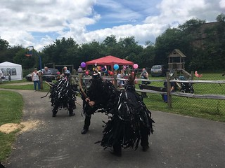 Hurst Green Village Fete, June 2018