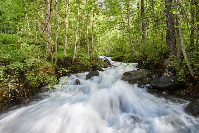 L'eau vive !  Living water