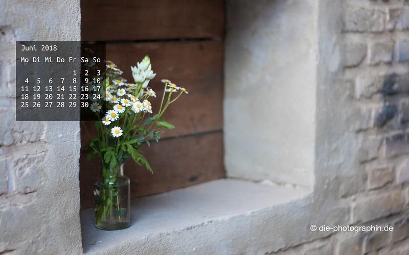 062018-blumenfenster-wallpaperliebe-diephotographin