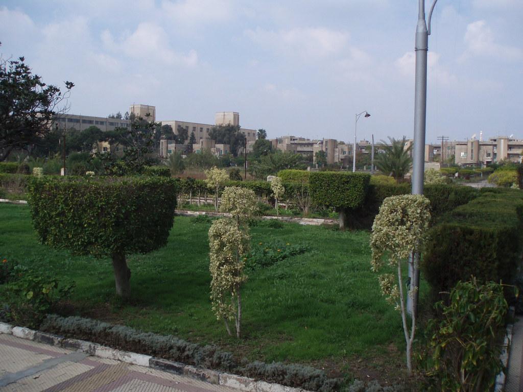 Kafr el-Dawwar Textile Company Compound
