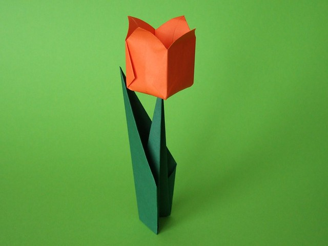 Origami tulip for kids: step-by-step instruction | 480x640