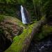 cascada en Guanga