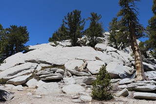 411 Looking up at the granite slabs and boulders on Mount Saint Ellen's | by _JFR_