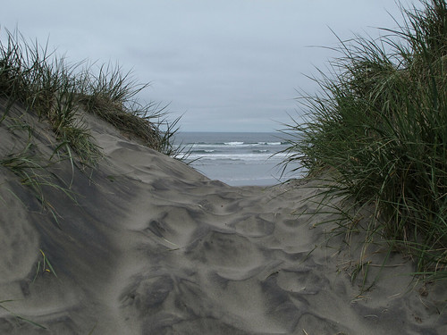 oregon seashore dunes beach pacific beachaccess sanddunes sand waves surf pacificocean sea coastline pacnw pacificcoast fortstevensstatepark oregoncoast beachscene nature canonpowershotg12 pspx9 zoniedude1 earthnaturelife