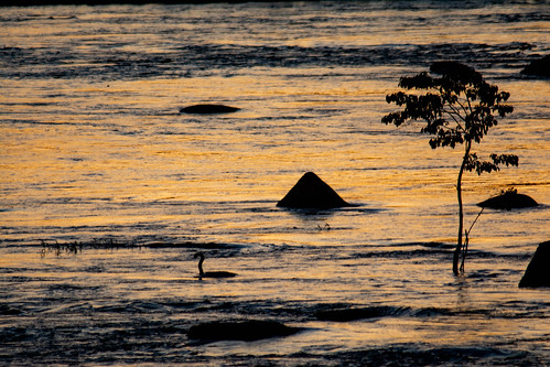 water sun sunset clouds columbia sc south carolina orange blue black swan rocks travel