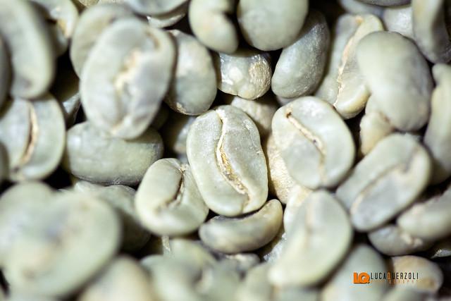Il chicco del Caffè Crudo