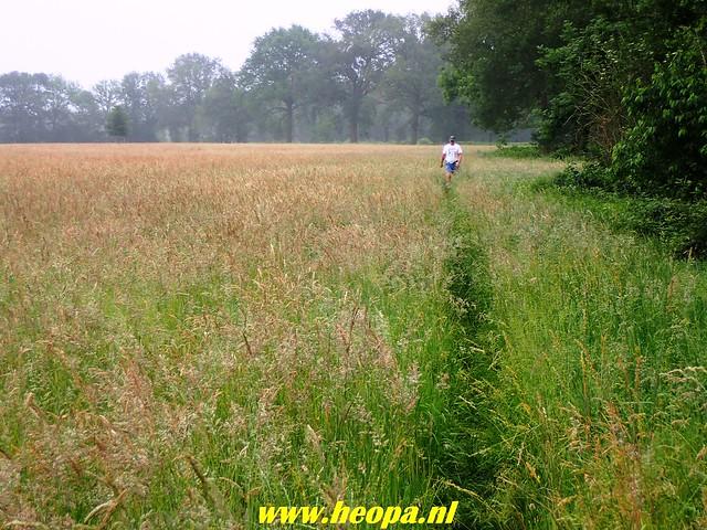 2018-06-02  Voorthuizen - Wandelfestijn     26 Km  (52)