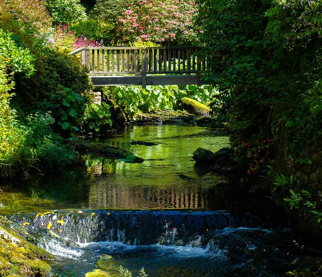 Picturesque Bridge