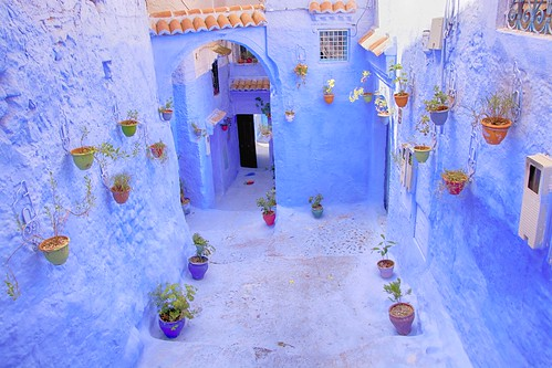 Blue alley with flower pots | by maios