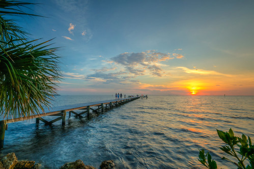 tampabay sunset littleharbor pier ruskinflorida ruskin florida sun water palm