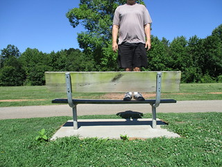 Bench Monday: Standing Backwards Because The Sun Was Glaring When I Stood Correctly Edition