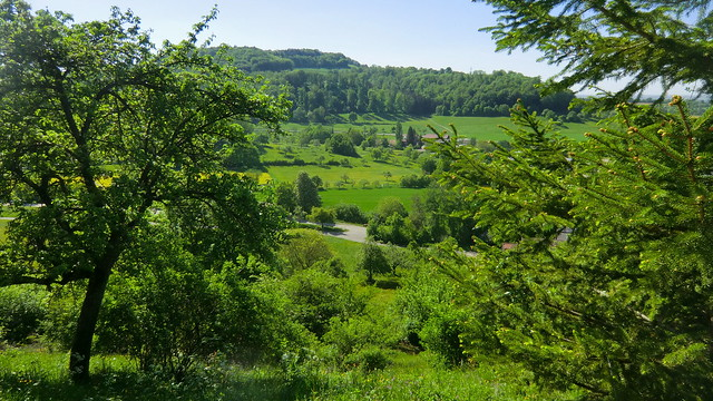 Wuerttemberg - Essingen - lush green of the landscape -  !wonderful!