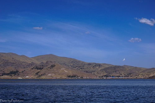 travel peru sky cloud andes altiplano titicaca puno mountains nature landscape water wave lake seagull bird